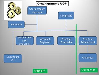Organigramme UGP